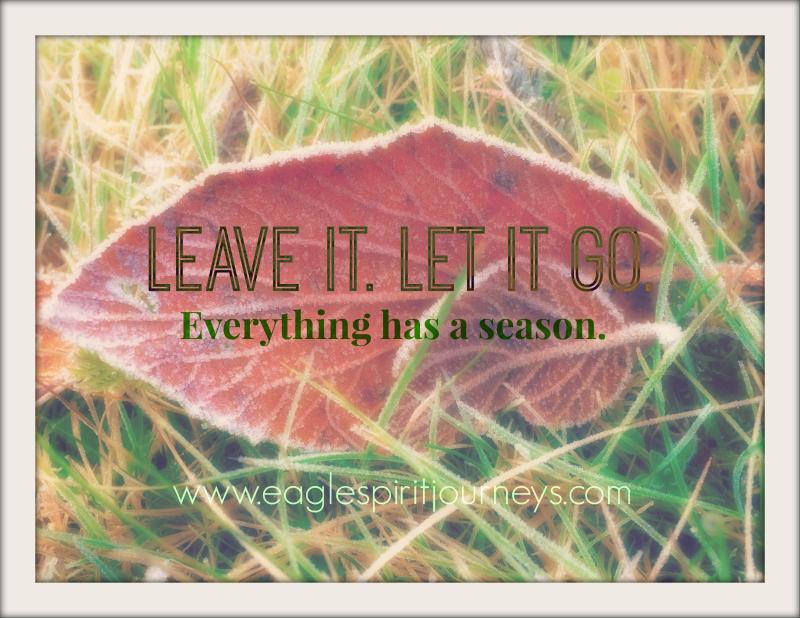 Walkshot (Dec815) Leave it Let it go